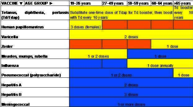 Can Recommended adult immunization schedule